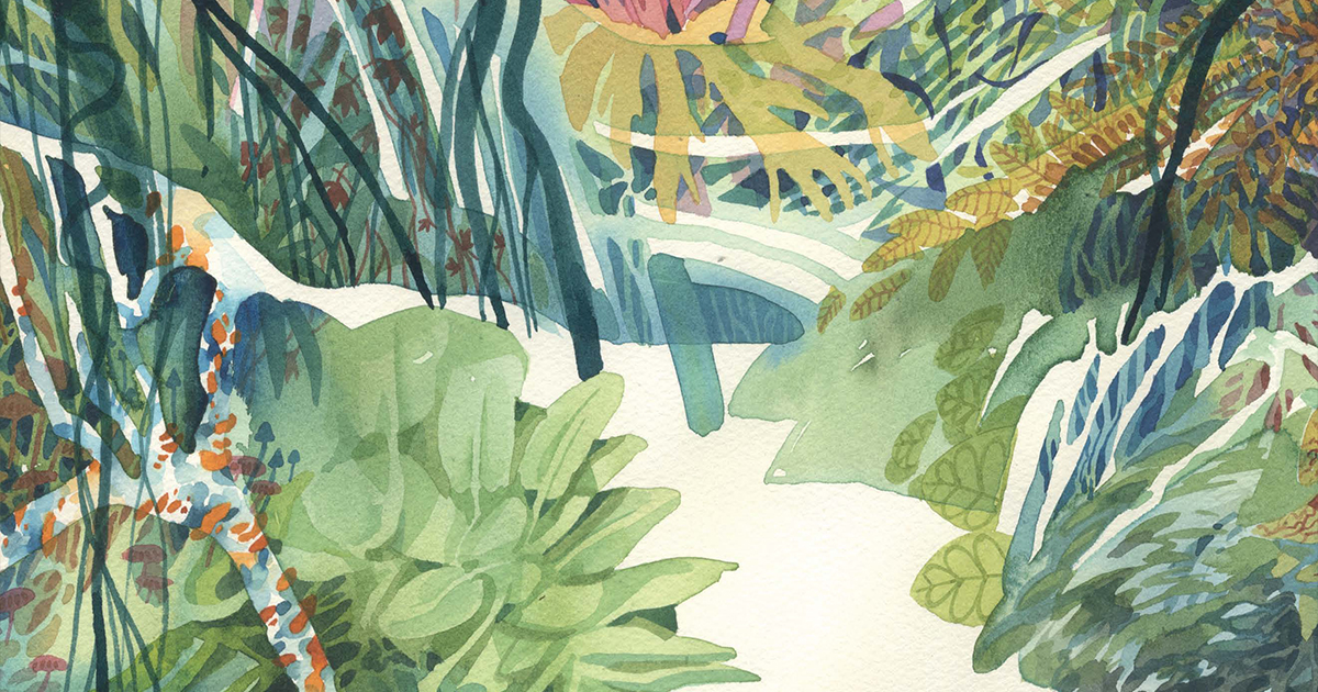 d406-amazzonia-hitnes-ericailcane-bastardilla-cover-fb.jpg